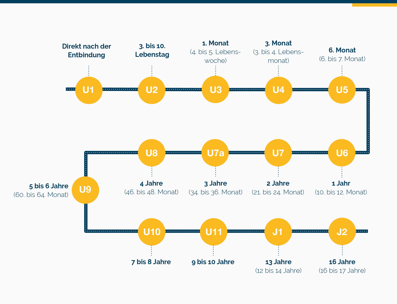 Grafik: Die U-Untersuchungen für Kinder im Überblick